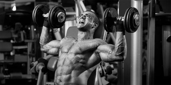 Many alternative functions also include while using these steroids
